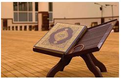 The Quran: Learn it, Don't Burn It