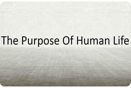 main purpose of islam